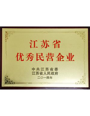江苏省优秀民营企业-秋雪荣誉